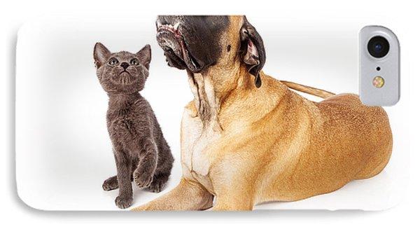 Dog And Cat Looking At A Bird Phone Case by Susan Schmitz