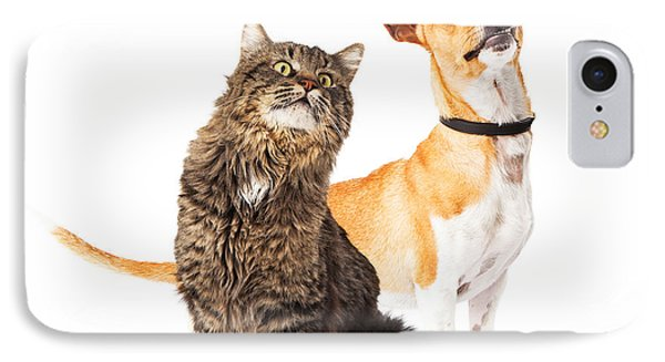 Dog And Cat Looking Up Together IPhone Case