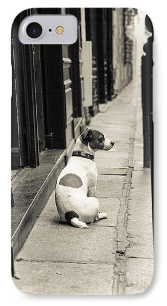Dog In Paris IPhone Case by Diane Diederich