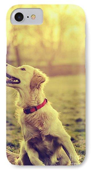 Dog In The Park Phone Case by Jelena Jovanovic