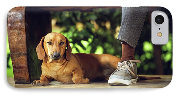 Dog Lying Down On Floor Under Table IPhone Case by Ktsdesign