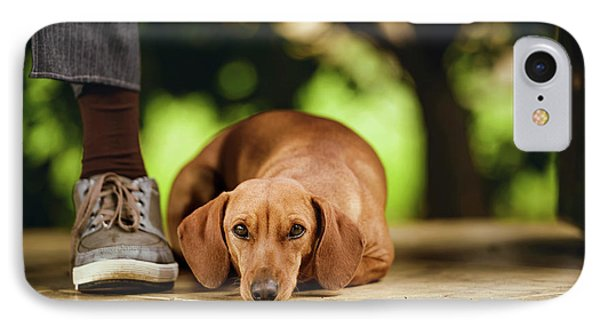 Dog Lying On Floor Under Table IPhone Case by Ktsdesign