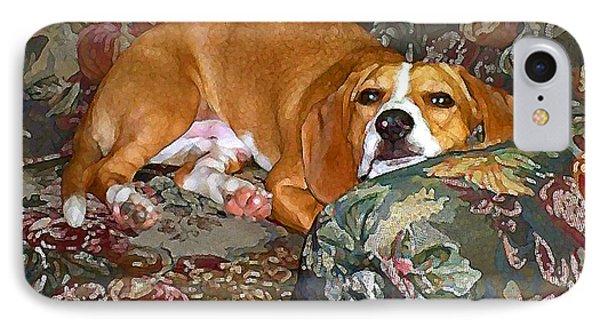 Dog - Mr. Oliver Is Comfy Phone Case by Maureen Tillman