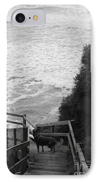 IPhone Case featuring the photograph Dog On Sea Stairs by Amanda Holmes Tzafrir