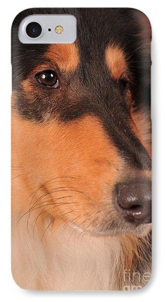IPhone Case featuring the photograph Dog Portrait by Randi Grace Nilsberg
