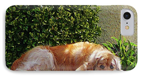 Dog Relaxing Phone Case by Susan Savad
