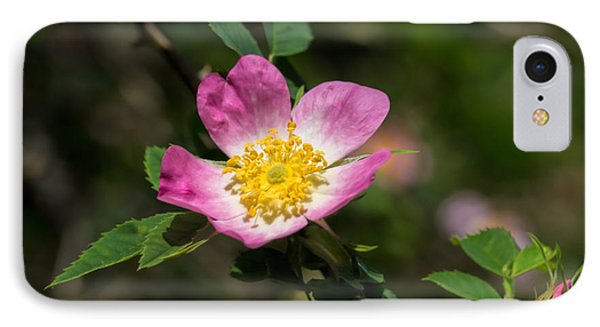 IPhone Case featuring the photograph Dog-rose by Leif Sohlman