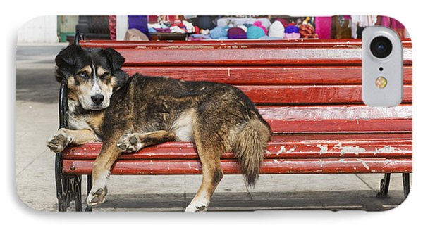 Dog Sleeping On A Red Bench Punta IPhone Case