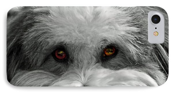 Coton Eyes IPhone Case by Keith Armstrong