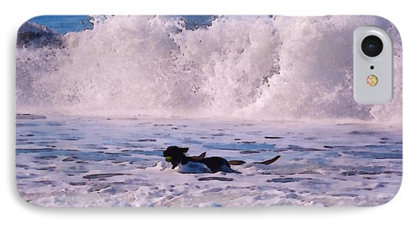 Dogs At Carmel California Beach Phone Case by Barbara Snyder