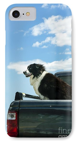 Dogs Love Trucks IPhone Case
