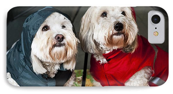 Dogs Under Umbrella IPhone Case