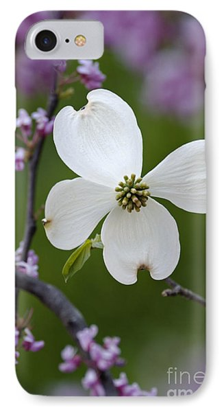 Dogwood And Redbud - D008979 IPhone Case by Daniel Dempster