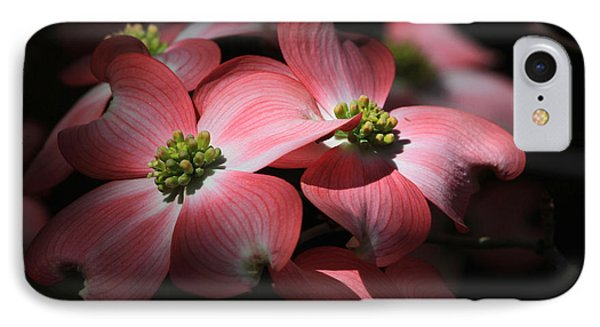 Dogwood Blossoms Phone Case by Donna Kennedy