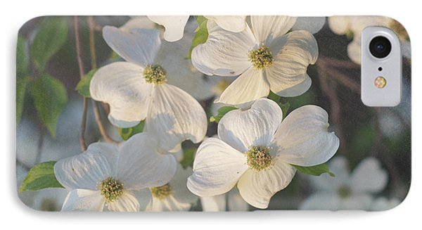 Dogwood Blossoms IPhone Case