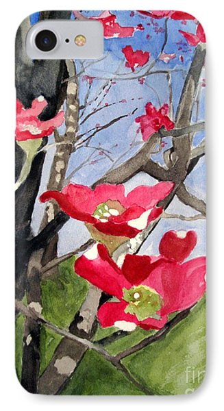 Dogwood Flowers IPhone Case by Sandy McIntire