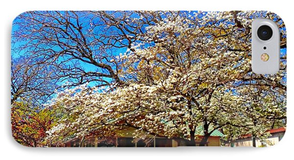 Dogwood In Full Bloom IPhone Case by Carrie OBrien Sibley
