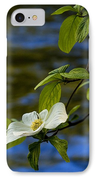 Dogwood On The Merced Phone Case by Bill Gallagher