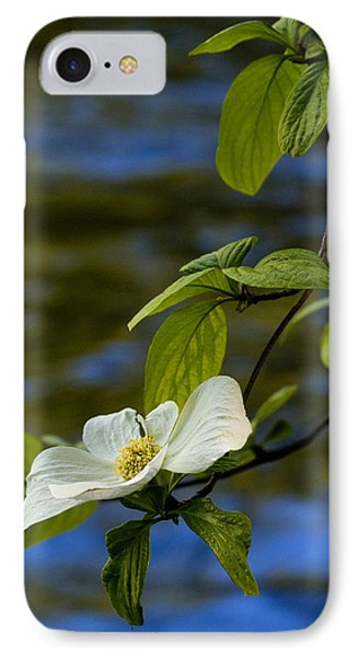 Dogwood On The Merced IPhone Case by Bill Gallagher