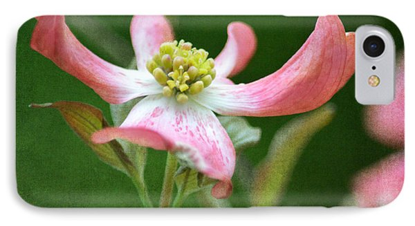 Dogwood Season Number Five IPhone Case by Lena Wilhite