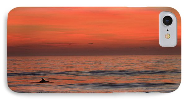 IPhone Case featuring the photograph Dolphin At Cape Hatteras by Mountains to the Sea Photo