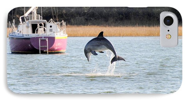 Dolphin Jumping In Taylors Creek IPhone Case by Dan Williams