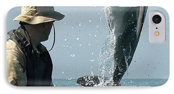 Dolphin IPhone Case by Paul Fearn