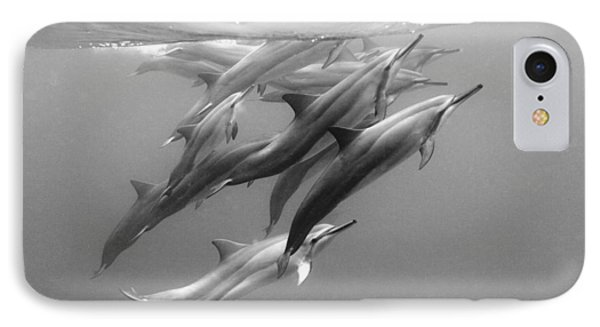 Dolphin Pod IPhone 7 Case
