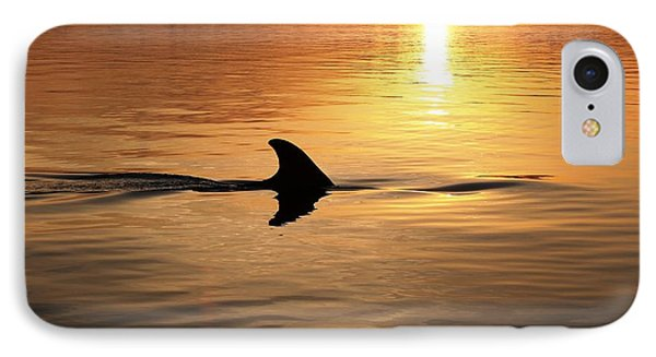 Dolphin Sunrise Phone Case by Fred Benavidez