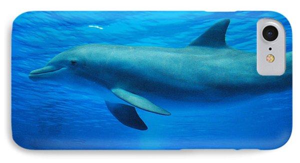 Dolphin Underwater IPhone Case by DejaVu Designs