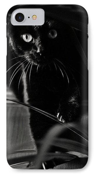 Domestic Black Panther IPhone Case