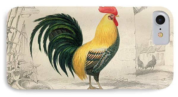 Domestic Cock IPhone Case by Edouard Travies