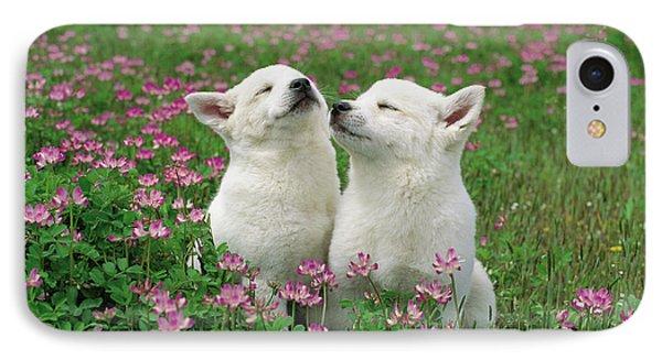Domestic Dog Canis Familiaris Puppies Phone Case by Yuzo Nakagawa