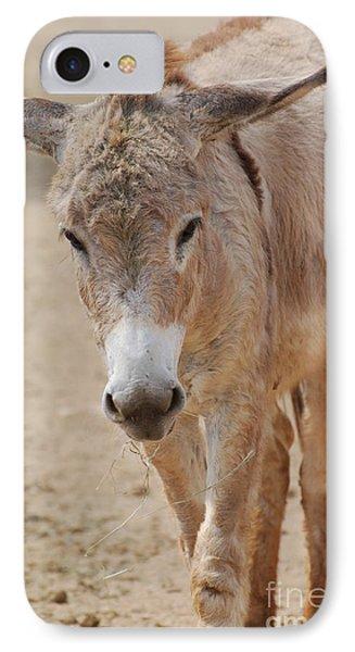 Donkey IPhone Case by DejaVu Designs