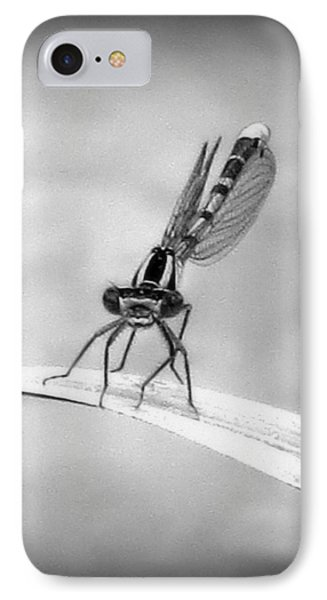 IPhone Case featuring the photograph Donna The Damselfly by Karen Shackles