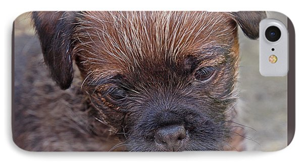 Don't Leave Me - Border Terrier Pupppy IPhone Case by Gill Billington