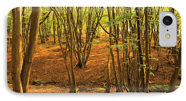 IPhone Case featuring the photograph Donyland Woods by David Davies