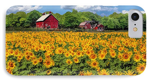 Door County Field Of Sunflowers Panorama IPhone Case by Christopher Arndt