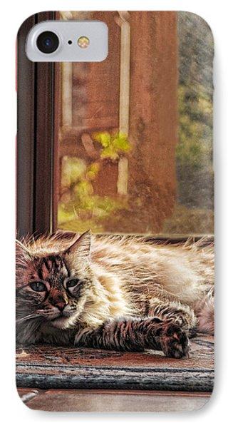 Doorstop Phone Case by Karen Slagle