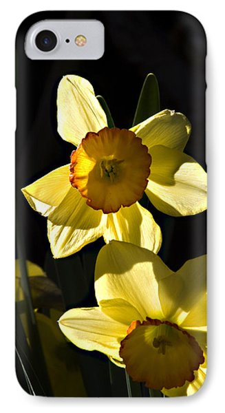 Dos Daffs IPhone Case by Joe Schofield