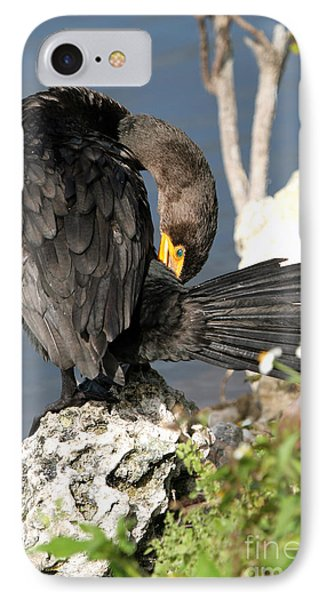 Cormorant Preens IPhone Case by Martha Marks
