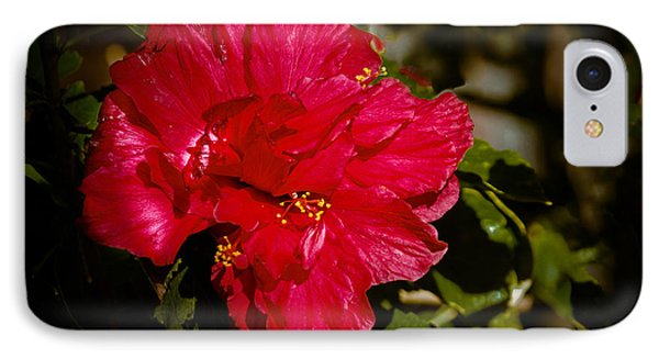 Double Hibiscus IPhone Case by Robert Bales
