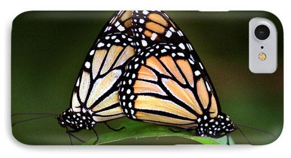 Double Monarch IPhone Case by Joseph G Holland