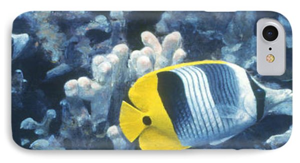 Double Saddleback Butterflyfish Phone Case by Randall Scott