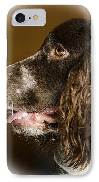 Dougie The Cocker Spaniel 2 IPhone Case by Linsey Williams