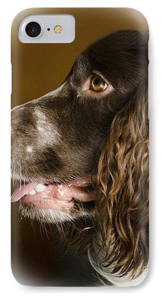 Dougie The Cocker Spaniel 2 IPhone Case