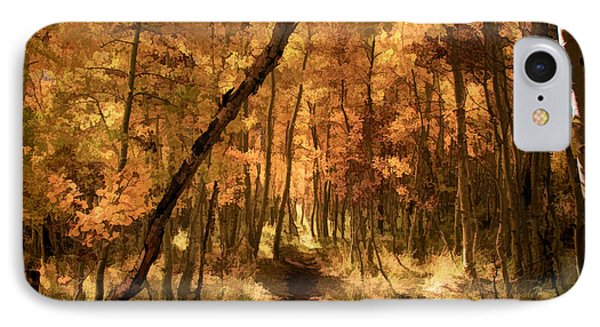 Down The Golden Path Phone Case by Donna Kennedy