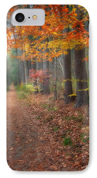 Down The Trail IPhone Case