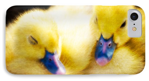 Downy Ducklings Phone Case by Edward Fielding