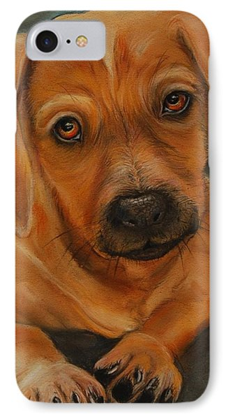 Doxie IPhone Case by Jean Cormier